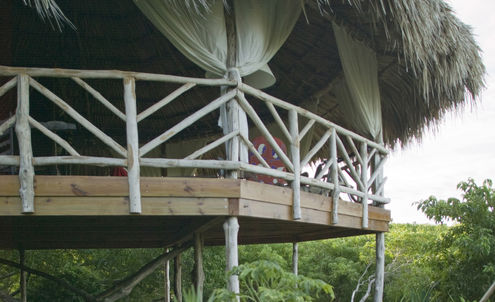 Treetop hotels show Travel & Hospitalitylers the sky's the limit