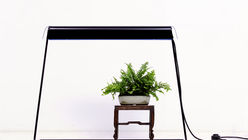 Light house: Lamp brings life to indoor flowers