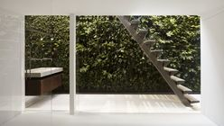 Home grown: Vertical garden brings greenery to urban dwelling