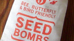 Bombs away: Seed mixes grow local