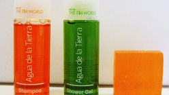 Eco-strategy gels at European hotel group