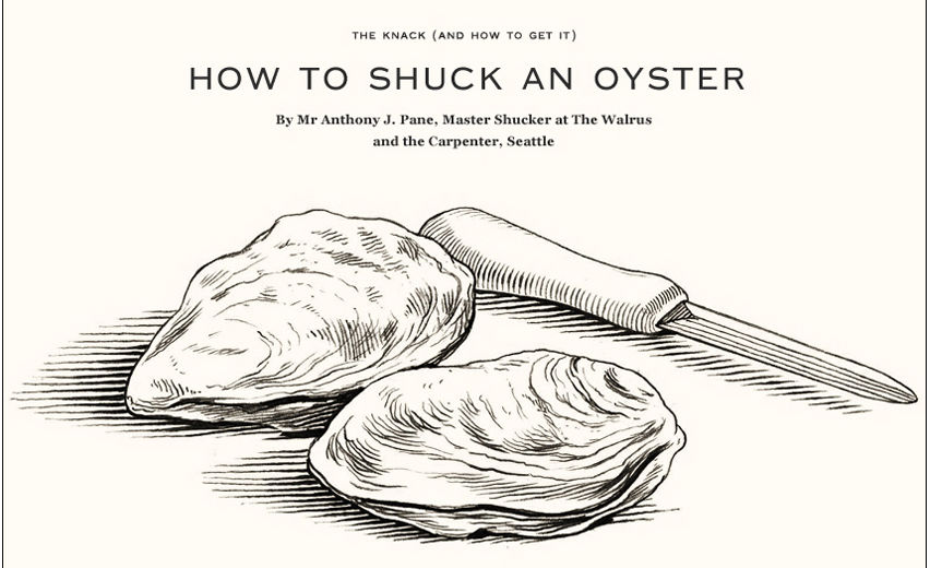 eastern oyster drawing - photo #15