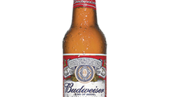 US beer brands tap into growing Hispanic market