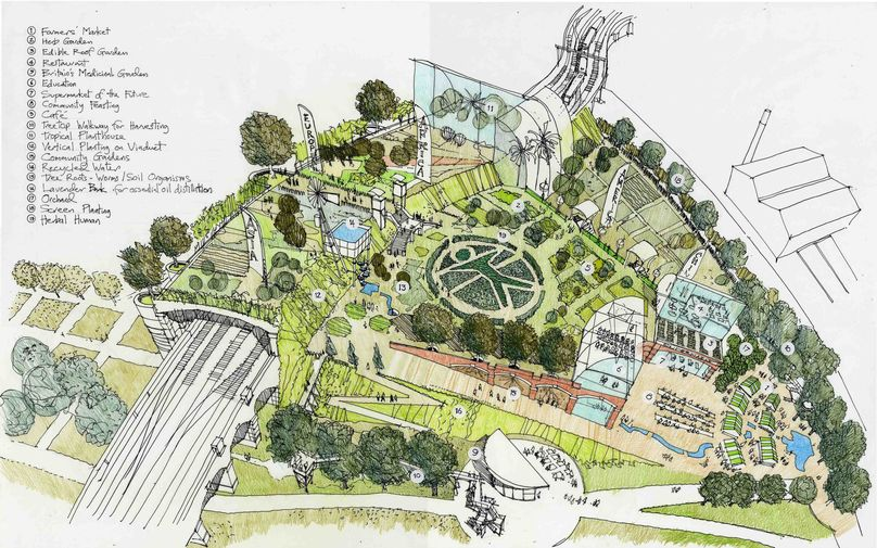 Plan for the Living Medicine World Garden, London