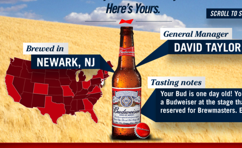 Budweiser campaign shows brand is on track