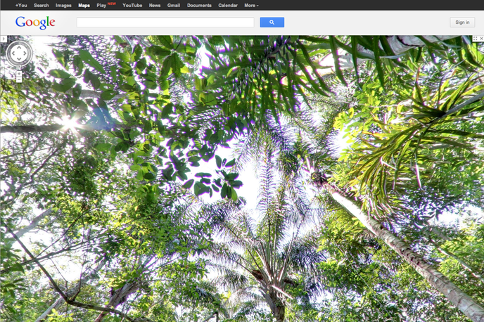 Google Amazon View