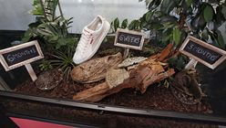 Eco sneaker: Puma shoes that turn into soil