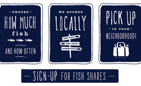 New Yorkers buy shares in local fishery start-up
