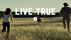 Live True: Whisky brand makes emotional plea