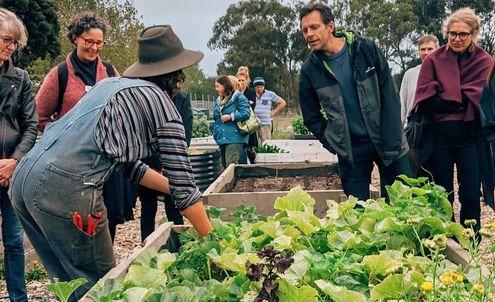 Local Food Market: Australia