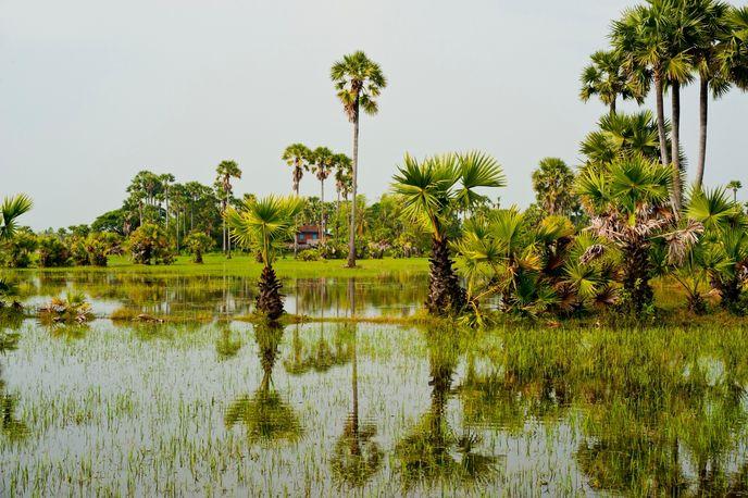 Aqua Expeditions, Vietnam