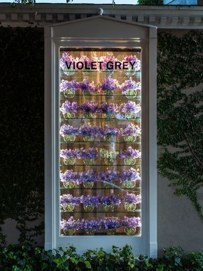 Violet Grey, Los Angeles