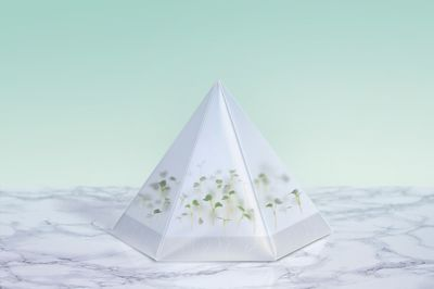 Microgarden growing kit by Stockholm-based designers Tomorrow Machine