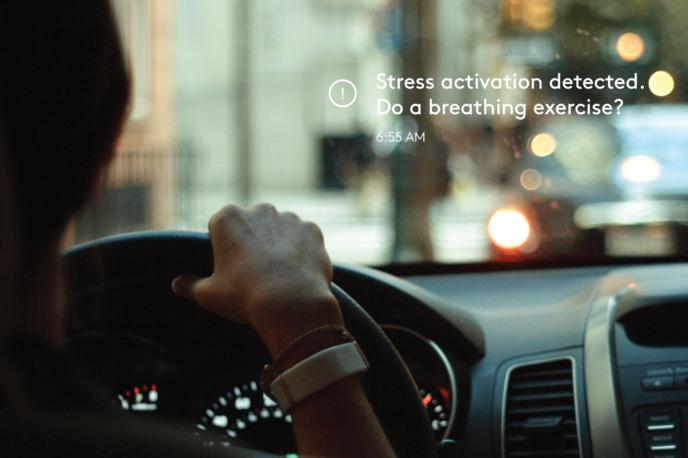 Olive stress tracker
