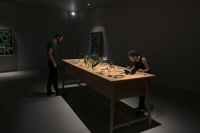 Emphemera, Mischer'traxler and Perrier-Jouët, Design Miami/ 2014