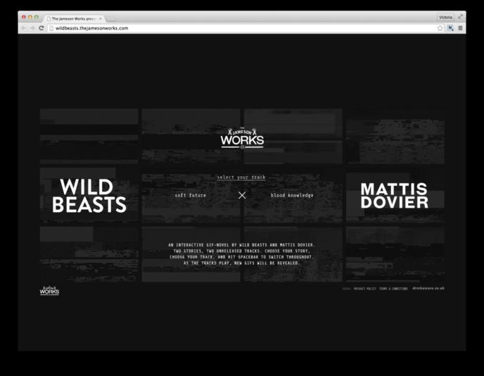 Wild Beasts x Mattis Dovier for Jameson Works