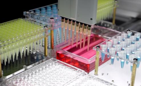 New Biodisruptors
