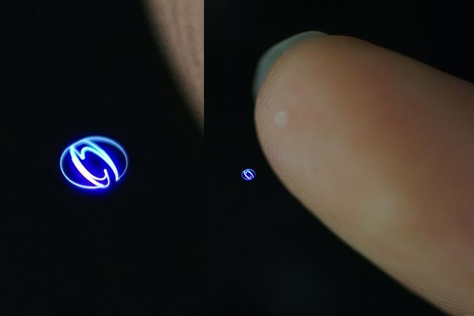 Tinker Bell hologram technology, Digital Nature Group
