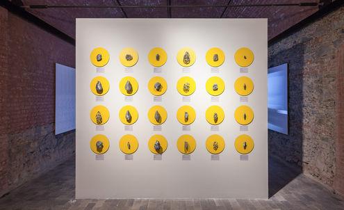 Istanbul Design Biennial 2016: Review