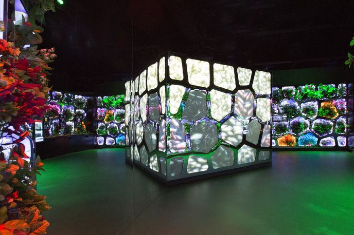Reimagining Climate Change at the Museum of the Future, Dubai