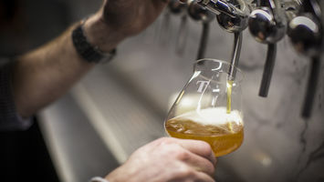 Crafting beer's future