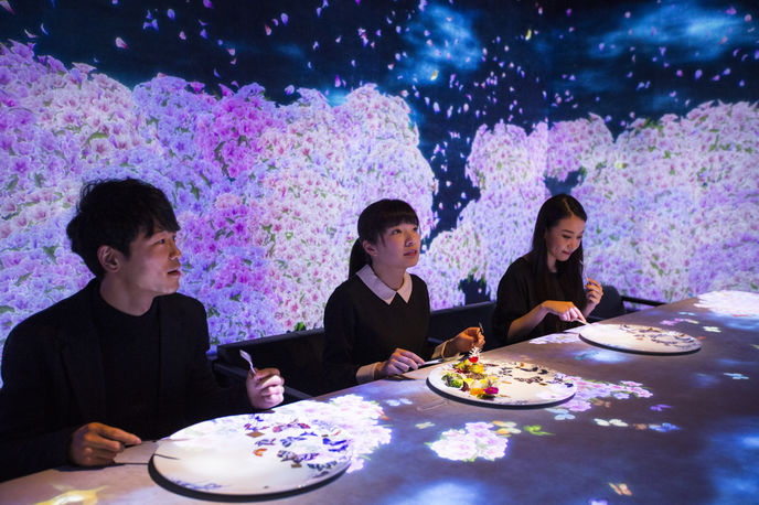 Worlds Unleashed and then Connecting SAGAYA by teamLab, Tokyo