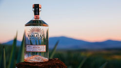 Moët Hennessy enters the premium tequila market