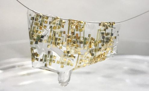 This wearable circuit is fully biodegradable