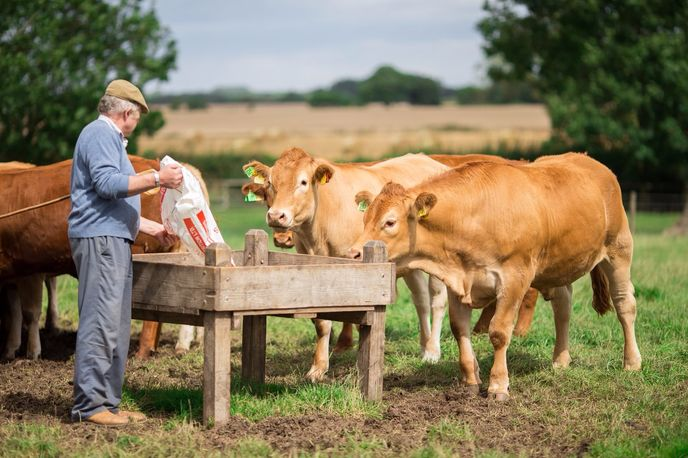 Morrisons British Farming, UK