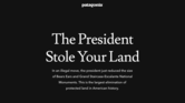 4. Patagonia fights assault on public monuments