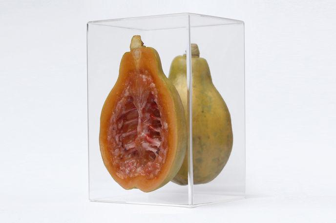 Hybris Series by Monica Piloni at The Embassy of Food, Dutch Design Week 2017