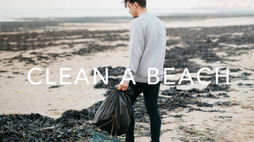 Haeckels wants to clean beaches around the world