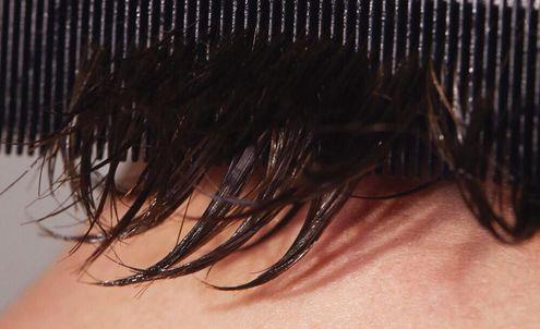 Skintellectual Haircare