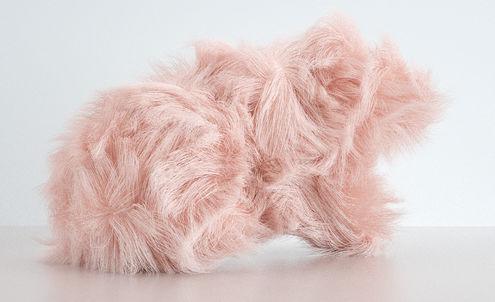Conscious Fur