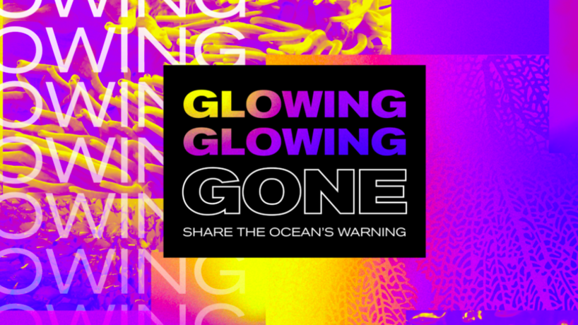 Glowing Glowing Gone by Pantone, Adobe and The Ocean Agency