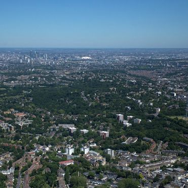 Green spaces boost mental health in cities