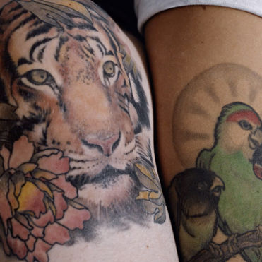 Lynx wants to keep tattoos looking fresh