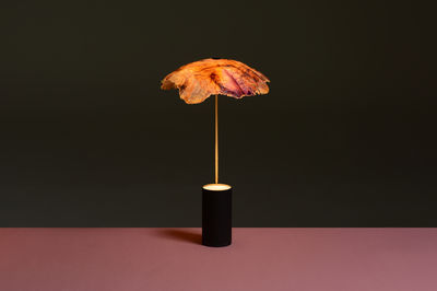 Veggie Lights by Studio Nir Meiri