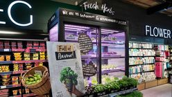 Vertical farms to grow Marks & Spencer's services