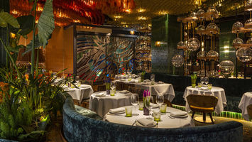 A multi-sensory restaurant inspired by the Amazon