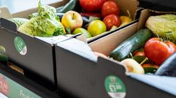 Lidl counters food waste with 'still good' boxes