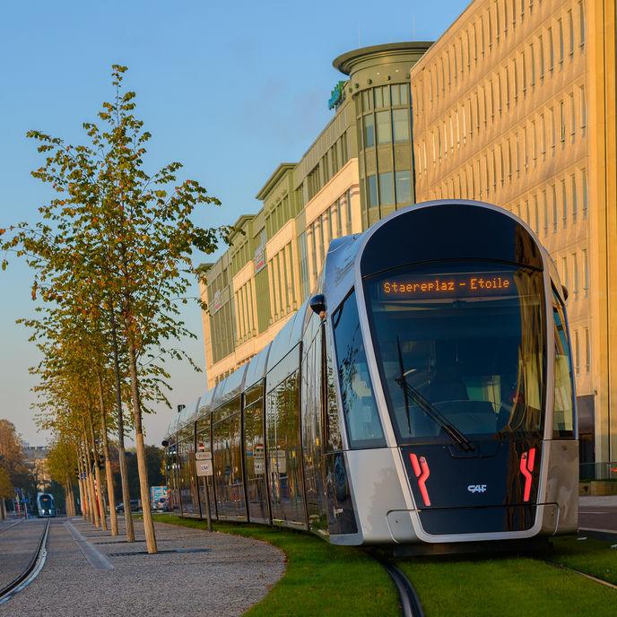 Mobilité Gratuite au Luxembourg